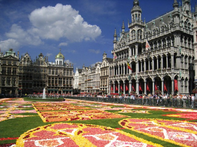 flower_carpet_02